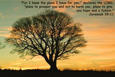 Jeremiah-29-11-PLANS-1b