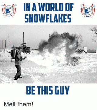 snowflake melter