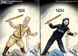 Image result for antifa cartoon