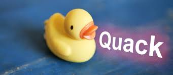 Image result for duck quack
