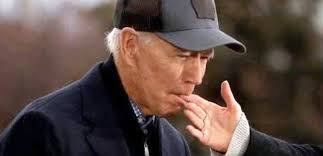 VIDEO: Biden bites his wife's fingers during a campaign speech and ...
